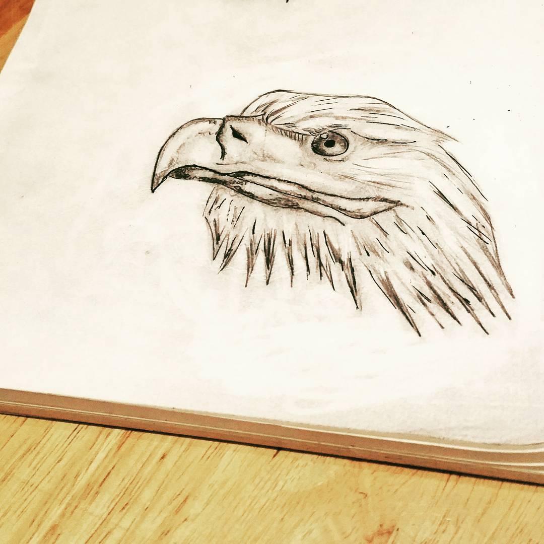 鹰首纹身手稿